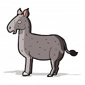 image of mule  - cartoon mule - JPG