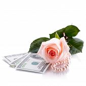 Pink Rose, Dollars And Pearl Beads.