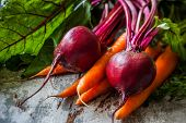 stock photo of root vegetables  - Fresh organic carrots and beetroot  an old wooden board - JPG