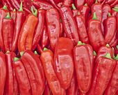 colorful red bell peppers for sale