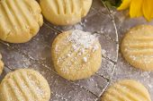 stock photo of shortbread  - Fresh baked shortbread biscuits with powder sugar straight from the oven.