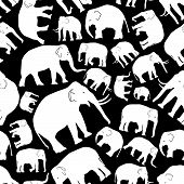 foto of tusks  - white vector elephants seamless black pattern eps10 - JPG