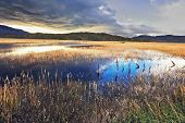 The sky is partially covered with low thunderclouds.  Shallow lake, overgrown with reeds, reflects t