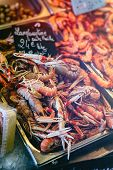 image of norway lobster  - Fresh Norway lobsters at fish markett in Normandy France