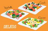 Vegetable, Greek, Caesar Salads