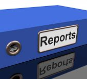 File Report Indicates Information Files And Data