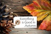Tag With Everything Is Good In Autumn