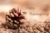 Fir Cone With Happy Thanksgiving