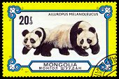 Vintage  Postage Stamp. Giant Pandas.