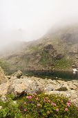 Misty Alpine Lake