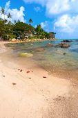 Beach, Bungalow, Sea