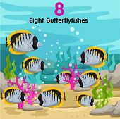 Illustrator of number with eight butterfly fish