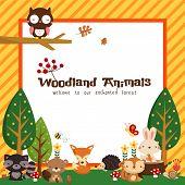 Woodland animal card