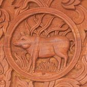 Pig  Chinese Zodiac Animal Sign