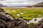 Valley Landmannalaugar In Iceland, Parking Tourists