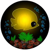 Transparent yellow fish