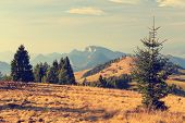 pic of pieniny  - autumn mountain landscape, Pieniny, Poland, vintage look