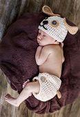 Cute Newborn Baby Sleeps In A Knitted Hat