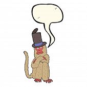 picture of crazy hat  - cartoon monkey wearing hat with speech bubble - JPG