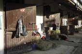 stock photo of stable horse  - photographed in daylight as an architectural detail horse stables - JPG
