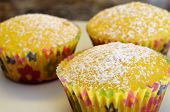 foto of confectioners  - Freshly baked lemon cupcakes sprinkled with powdered confectioner sugar - JPG