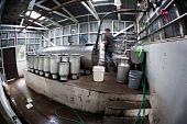 Rustic Dairy Operation In Costa Rica