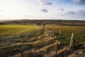 pic of farm landscape  - Beautiful Spring evening light over fields landscape on farm - JPG