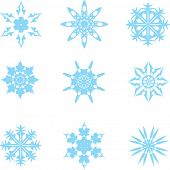 Set of nine different snowflakes. Vector.