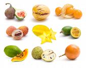 exotic fruit collection