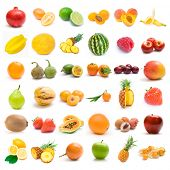 picture of pawpaw  - fruit collection - JPG