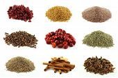 Various kinds of spices - dried pomegranate seeds, fenugreek seeds, Psyllium seeds,whole cloves, who