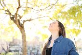 Relaxed Woman Is Breathing Deep Fresh Air In A Park With Trees In The Background poster