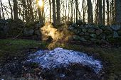 A Burnt Out Fire Of Garden Waste In A Residential Countryside Garden. White Ash And  Ember, No Flame poster