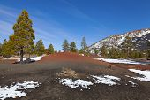image of scoria  - Sunset Crater volcano in Flagstaff - JPG