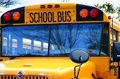 Schoolbus poster