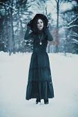 Asian gothic goth girl at snowy winter outdoors poster