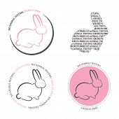 Set Of 4 - No Animal Testing Icons. Animal Cruelty And Testing Icons With Bunny And Text  - No Anima poster