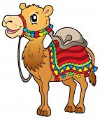 Cartoon camel with saddlery - vector illustration.