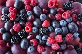 Background Of Fresh Fruits And Berries. Ripe Blackberries, Blueberries, Plums, Red Berries, Raspberr poster