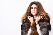 Fur Fashion Concept. Winter Elite Luxury Clothes. Female Brown Fur Coat. Fur Store Model Enjoy Warm  poster