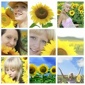 Summer collage with sunflowers and  faces