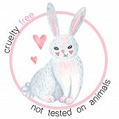 Animal Cruelty Free Symbol. Not Tested On Animals. No Animal Testing. Go Vegan. Can Be Used As Stick poster