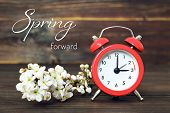 Daylight Saving Time, Spring Forward, Summer Time Change poster