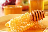 Sunlit still life of golden honeycombs with fresh honey and drizzler.  Jars of honey and fresh fruit