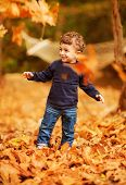 Photo of cute little boy enjoying autumnal nature, pretty infant playing in park, cheerful baby boy