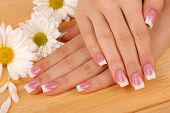 image of french manicure  - Woman hands with french manicure and flowers on wooden background - JPG