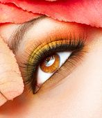 Autumn Makeup. Fall Make-up Closeup