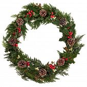 Christmas decorative wreath of holly, ivy, mistletoe, cedar and leyland leaf sprigs with pine cones