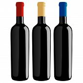 Wine Bottles - Classic Shape