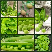 fresh green vegetables collage